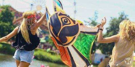 Le 5 tracce più shazammate durante il Tomorrowland