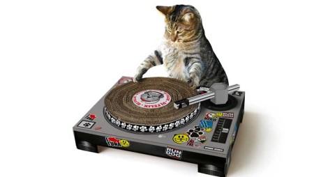 Trasforma il tuo gatto in un Dj con lo scratching Dj set